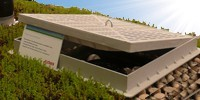 Flavent® solutions for green roofs